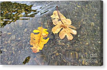 Floating Emotions Canvas Print by Cheryl Young