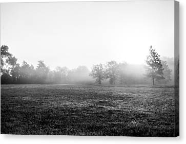 Floating Mist Canvas Print by Shelby  Young