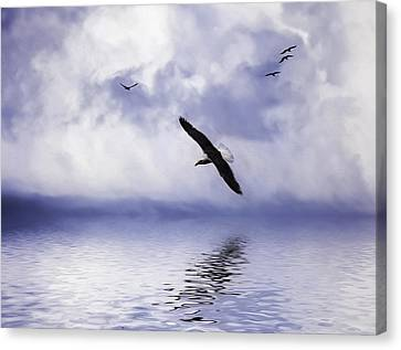 Floating On Air Canvas Print by Diane Schuster