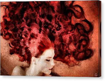 Floating Red Canvas Print by Gun Legler