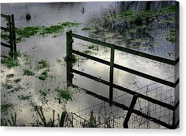 Flooded Field Canvas Print by Cordelia Molloy