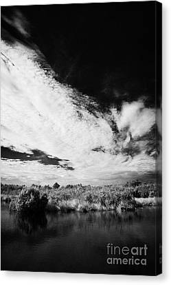 Flooded Grasslands And Mangrove Forest In The Florida Everglade Canvas Print by Joe Fox