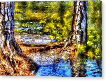 Flooded Roots Canvas Print by Daniel Eskridge