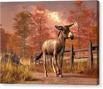 Flop Eared Donkey Canvas Print by Daniel Eskridge