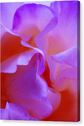 Abstract Red White Orange Pink Flowers Art Work Photography Canvas Print by Artecco Fine Art Photography