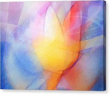 Floral Light Canvas Print by Lutz Baar