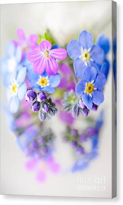 Floral Reflection Canvas Print by Jan Bickerton
