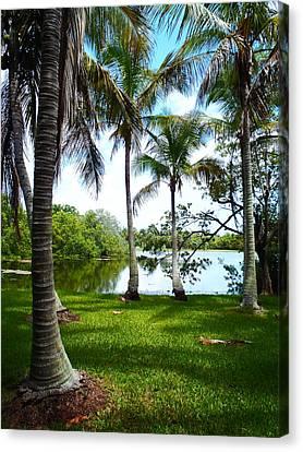 Florida Lake Canvas Print by Carey Chen
