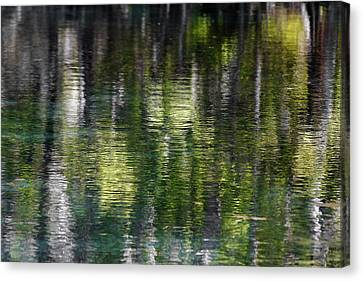 Florida Silver Springs River Canvas Print by Christine Till