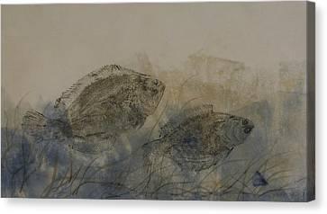 Flounder Duo Canvas Print by Nancy Gorr
