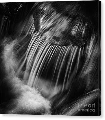 Flow Canvas Print by Rod McLean
