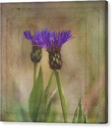 Flower Art - Waiting For Others Canvas Print by Jordan Blackstone