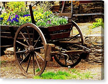 Flower Cart Canvas Print by Design Windmill