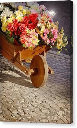 Flower Handcart Canvas Print by Carlos Caetano