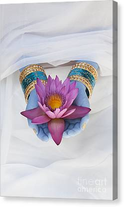Flower Offering Canvas Print by Tim Gainey