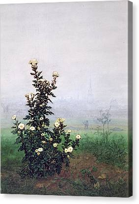 Flowering Chrysanthemum With Worker Canvas Print by Leon Bonvin