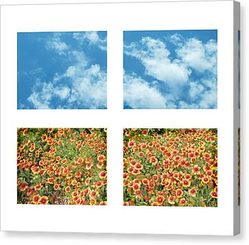Flowers And Sky Canvas Print by Ann Powell