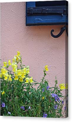 Flowers And Window Frame Canvas Print by Bruce Gourley