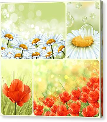 Flowers Collage Canvas Print by Veronica Minozzi