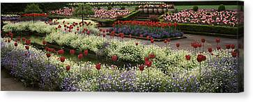 Flowers In A Garden, Butchart Gardens Canvas Print by Panoramic Images
