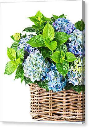 Flowers In Basket Canvas Print by Boon Mee