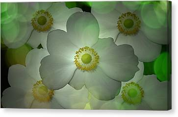 Flowers In My Garden Canvas Print by Louis Ferreira
