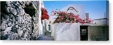 Flowers On Rooftop Of A House Canvas Print by Panoramic Images
