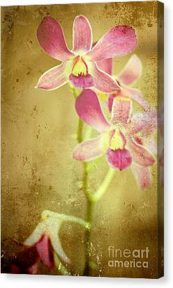 Flowers Canvas Print by Sophie Vigneault