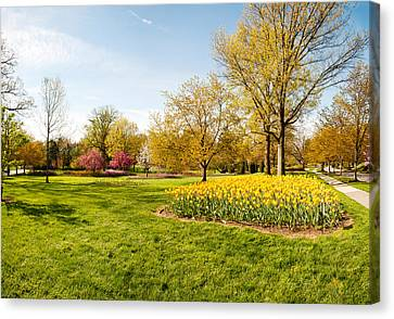 Flowers With Trees At Sherwood Gardens Canvas Print by Panoramic Images