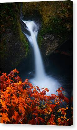 Flowing Into Fall Canvas Print by Darren  White