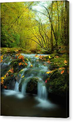 Flowing October Canvas Print by Michael Eingle
