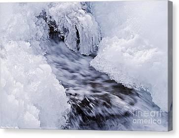 Flowing Canvas Print by Simona Ghidini