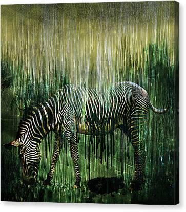 Flowing Stripes Canvas Print by Marian Voicu