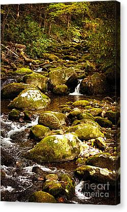 Flowing Water Canvas Print by Lena Auxier