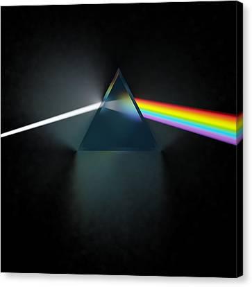 Floyd In 3d Simulation Canvas Print by Meir Ezrachi