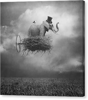 Fly Canvas Print by Beata Bieniak