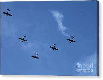 Fly Bye Canvas Print by Graham Foulkes