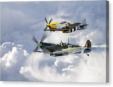 Flying Brothers Canvas Print by J Biggadike
