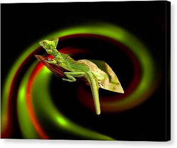 Flying Gekko Canvas Print by Christine Sponchia