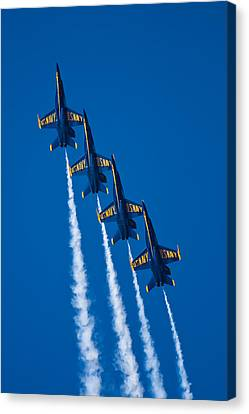 Flying High Canvas Print by Adam Romanowicz