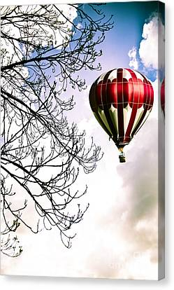 Flying High Canvas Print by Jan Bickerton