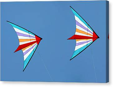 Flying Kites Into The Wind Canvas Print by Christine Till
