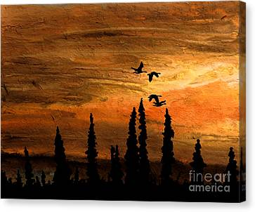 Flying Low Canvas Print by R Kyllo