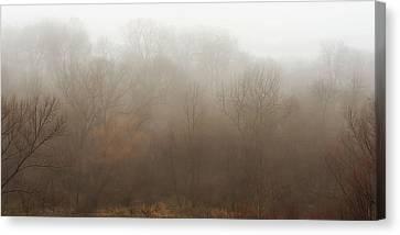 Fog Riverside Park Canvas Print by Scott Norris