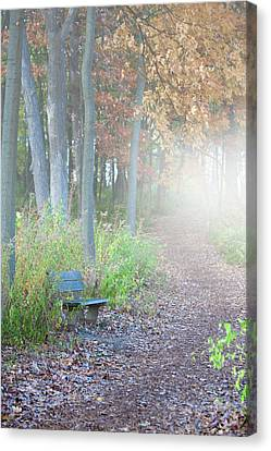 Foggy Autumn Morning Canvas Print by Sebastian Musial