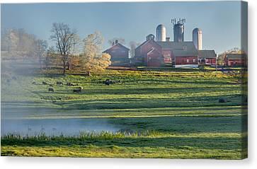 Foggy Farm Morning Canvas Print by Bill Wakeley