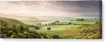 Foggy Field, Villa Belvedere, San Canvas Print by Panoramic Images