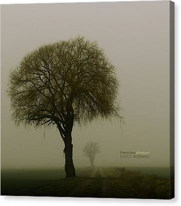 Foggy Morning Canvas Print by Franziskus Pfleghart