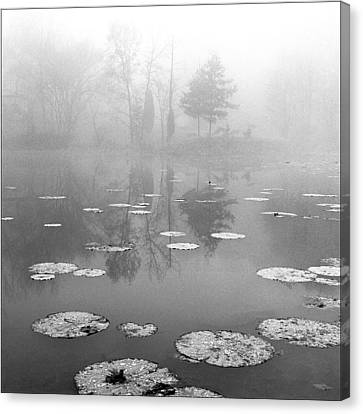 Foggy Morning Canvas Print by Wendell Thompson