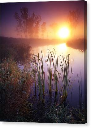 Foggy Sunrise Canvas Print by Ray Mathis